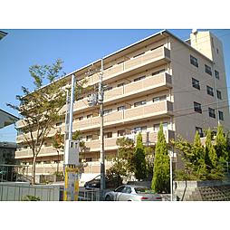 グミヒルズ[4階]の外観