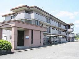 メゾンド−ル永岡[2階]の外観