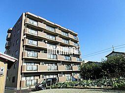 SOLE加木屋[6階]の外観