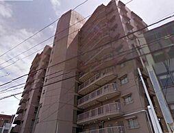 広島県広島市南区南蟹屋1丁目の賃貸マンションの外観