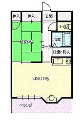 新井駅 4.1万円