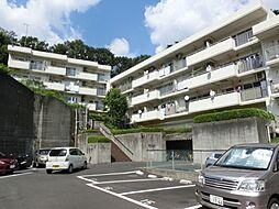 神奈川県川崎市麻生区片平2丁目の賃貸マンションの外観