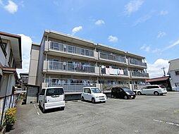 静岡県富士市伝法の賃貸マンションの外観