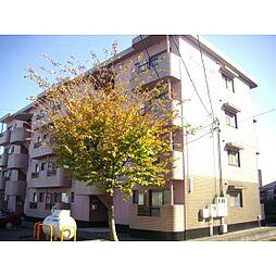 静岡県浜松市中区葵西2丁目の賃貸マンションの外観