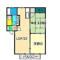 桂ハイツ A棟[1階]の間取り