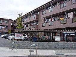 大阪府高槻市中川町の賃貸マンションの外観