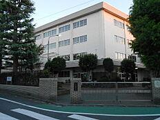 江戸川区立松江第四中学校まで850m 徒歩11分