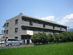 ルーセント篠栗Ⅱ[3階]の外観