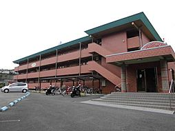 和歌山県和歌山市中の賃貸マンションの外観