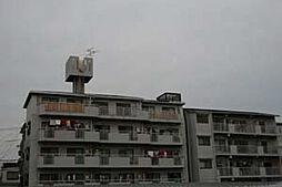 摂津第5マンション[203号室]の外観