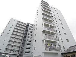 松戸パレス[6階]の外観