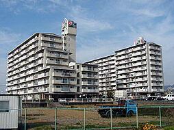 サンライズマンション岩出II903号[9階]の外観