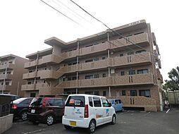 淀コーポ3[3階]の外観