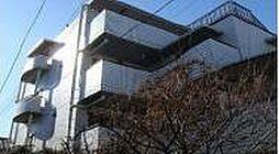 エミネント高円寺[206号室]の外観