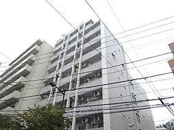 スカイコート入谷[8階]の外観