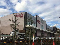 [一戸建] 東京都板橋区坂下3丁目 の賃貸【/】の外観