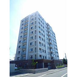 エクセルシオールプレザ新札幌