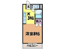 愛媛県松山市来住町の賃貸マンションの間取り