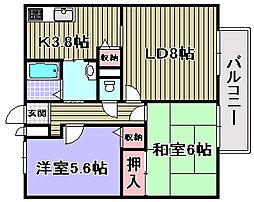 マノワールYAMAMOTO[2階]の間取り