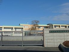 小学校水戸市立新荘小学校まで350m