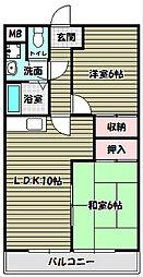 シェラ金剛[1階]の間取り