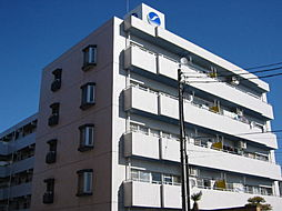 メゾンブランシュ1号館[3階]の外観