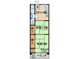 京都府京都市伏見区深草大亀谷西寺町の賃貸マンションの間取り