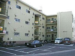 小堀マンション[2階]の外観