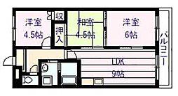 フローラル マンション[3階]の間取り