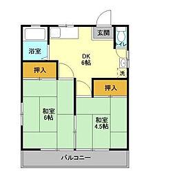 千葉県松戸市新松戸6丁目の賃貸マンションの間取り