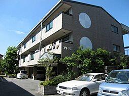 大阪府東大阪市善根寺町4丁目の賃貸マンションの外観