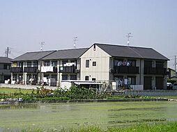 大阪府貝塚市石才の賃貸アパートの外観