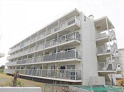 岐阜県大垣市新開町の賃貸マンションの外観