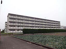 ビレッジハウス松山上野[106号室号室]の外観