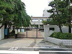 練馬東小学校 約735m
