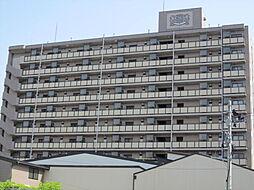 ライオンズマンション高田[305号室]の外観