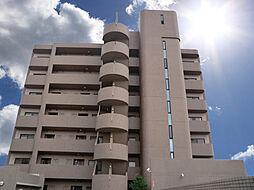大阪府八尾市八尾木北6丁目の賃貸マンションの外観
