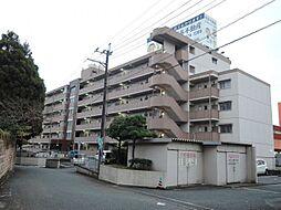 新栄二日市ハイツ[313号室]の外観