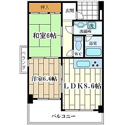 アルトピノ姫島[205号室]の間取り