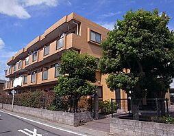 千葉県佐倉市井野の賃貸マンションの外観