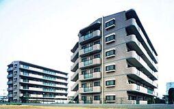 サニーフォレスト藤原[1-602号室]の外観