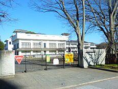 小学校水戸市立三の丸小学校まで1586m
