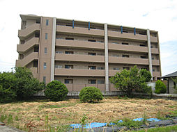 大阪府和泉市万町の賃貸マンションの外観