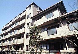 東京都世田谷区大蔵1丁目の賃貸マンションの外観
