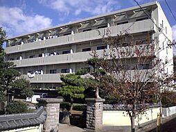 Y'sシャングリーラ[1階]の外観