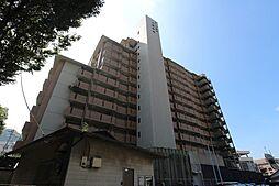 コープ野村八幡中央[9階]の外観
