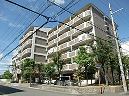 Dio 花水木[6階]の外観