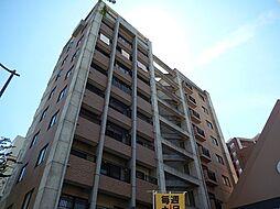カーサ・アネシス[4階]の外観