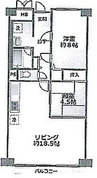 兵庫県明石市大久保町西島の賃貸マンションの間取り