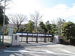 葵中学校1100m